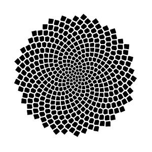 spiralsBlack